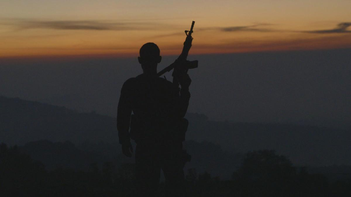 2015 Reviews: Cartel Land